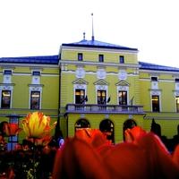 Eredménytelen a nyíregyházi színház igazgatói posztjára kiírt pályázat