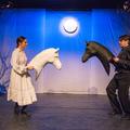 Nyilvános a Reflex3 Nemzetközi Színházi Fesztivál teljes műsora