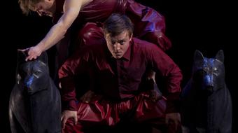 Aki ellenáll, kivégzik – Az Irtás a Szkéné Színházban