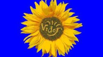 Itt a VIDOR Fesztivál 2012. évi színházi versenyprogramja