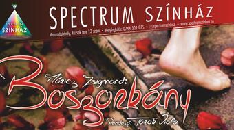Új magyar színház nyílik Marosvásárhelyen