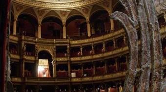 Ezüst rózsa bált rendez az Operaház