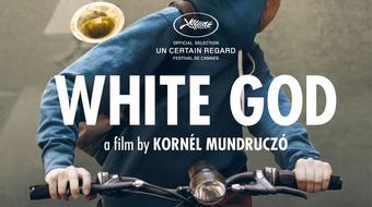 Mundruczó Kornél: a fődíj a szerzői film megerősítése