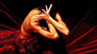 A rózsa hangja - Táncszínházi premier a Bethlen Téri Színházban