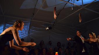 Két díj a szabadkai Kosztolányi Dezső Színháznak Podgoricában