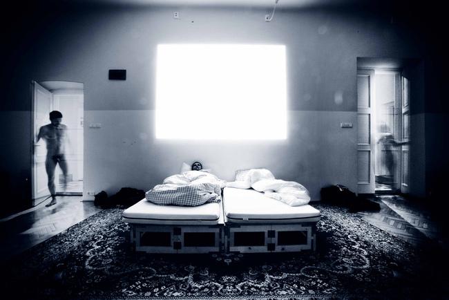 Krétakör - Anyalógia (2010. január)