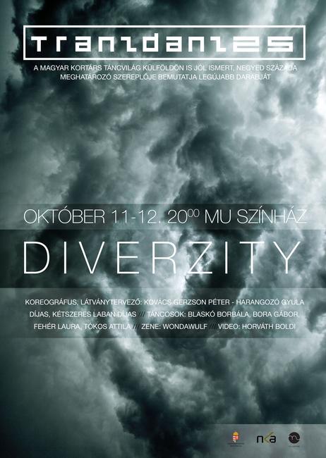 DiverZity - flyer