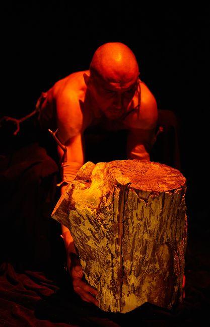 Fázisok - Egy fáról