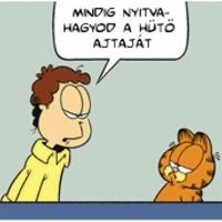 Garfield lean lesz: 6
