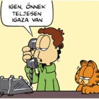 Garfield lean lesz: 5