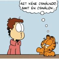 Garfield lean lesz: 1