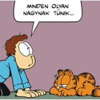 Garfield lean lesz: 9