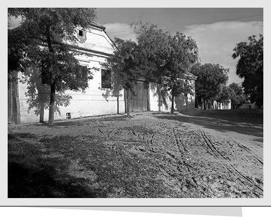 131016_Mária utca 1952.jpg