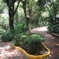 Kuala Lumpur - Madárpark és pillangópark