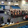 Székely Pál és Erdei Nóra a bajnok, Bezzeg Nándor visszatért