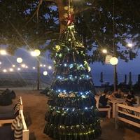 Karácsonyfa sörös üvegből - sánta Karácsonyi hangulat