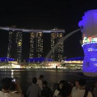 Szingapúr tisztasága, maga az anti-Bali