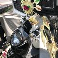 Boldogok a Gépjárművek, mert övék a Végtelen Alkatrészek Országa - Bali