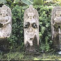Ubud - majmok, jóga, turisták