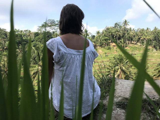 Rizsföld lépcsők Tegalalang-ban