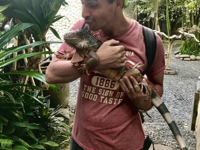 Fehér kígyó, bújkáló varánusz, lecsapó sas - Bird Park Bali