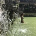 Meleg vízű forrás a 30 fokban nem jó ötlet