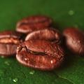 Kávéliszt