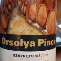 Orsolya Pince, Százrejtekű 2009