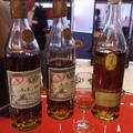 A.E. Dor - cognac stílusgyakorlatok a Paradicsomból