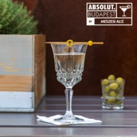 Very Dirty Vodka Martini by Meszesi Aliz