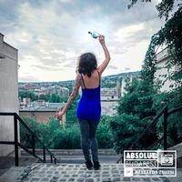 Absolut Budapest by Mészáros Zsuzsi