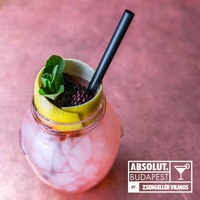 Absolut Bramble by Zsengellér Vilmos