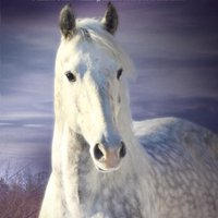 >FREE> True Blue: Book Three Of The Horses Of Oak Valley Ranch. Service About rodea Avenida Thanks
