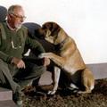 Kutyák gazdái, gazdák kutyái