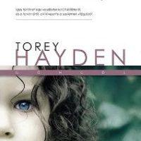 Torey Hayden - Szellemlány