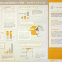 Infografika-tanácsadás a Carnation-nek