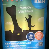 [brief.blog rovat:] KHB: Csontot a kutyának