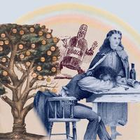 Alkoholizmus – A terápia lehetőségei