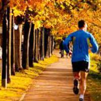 Mozgással csökkenthető az alkohol káros hatása