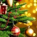 Áldott békés ünnepeket kívánunk mindenkinek!