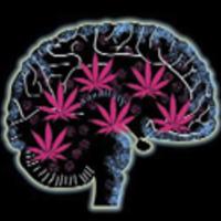 A fű károsítja az agyat? Nem egészen