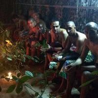 Leszokás a drogfüggőségről - ibogainnal