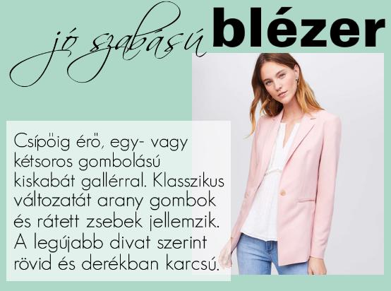 blezer_1.png
