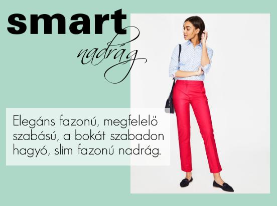 smart.png