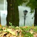 Mi várható az őszi adócsomagban?