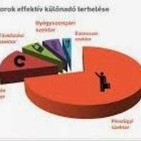 Jancsa-Pék Judit: A különadók csaknem felét a fogyasztók fizetik