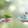 A környezetvédelmi termékdíjról általában - 4. rész: speciális esetkörök