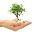 A környezetvédelmi termékdíjról általában - 3. rész: mentesség, visszaigénylés