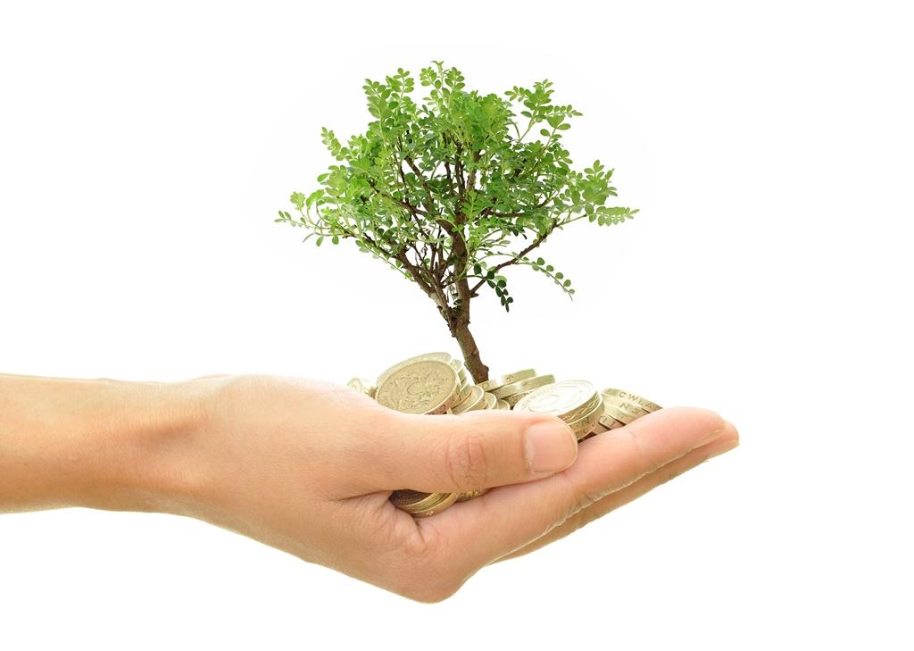 fejlesztes_befektetes_kornyezetvedelem.jpg