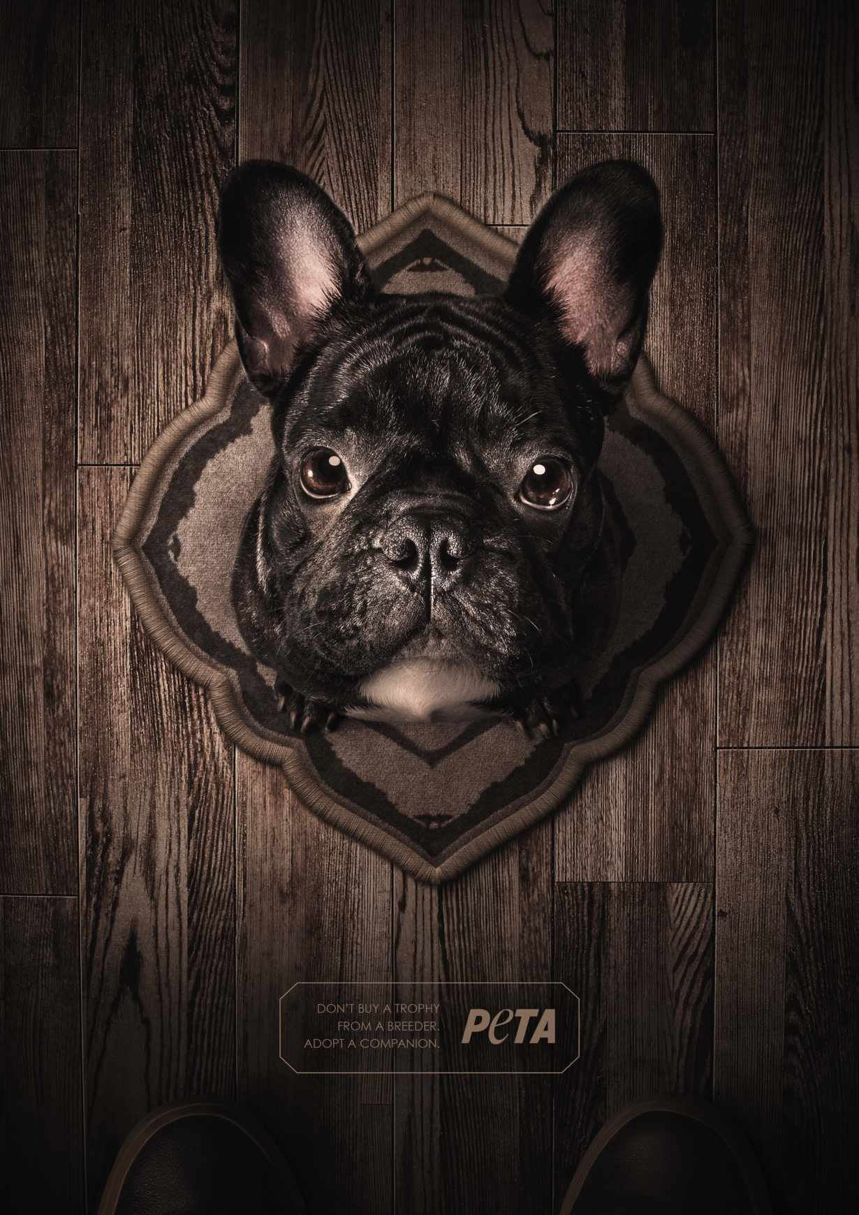 Bulldog trófea